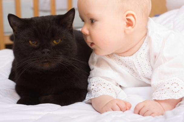 Cute baby with cat